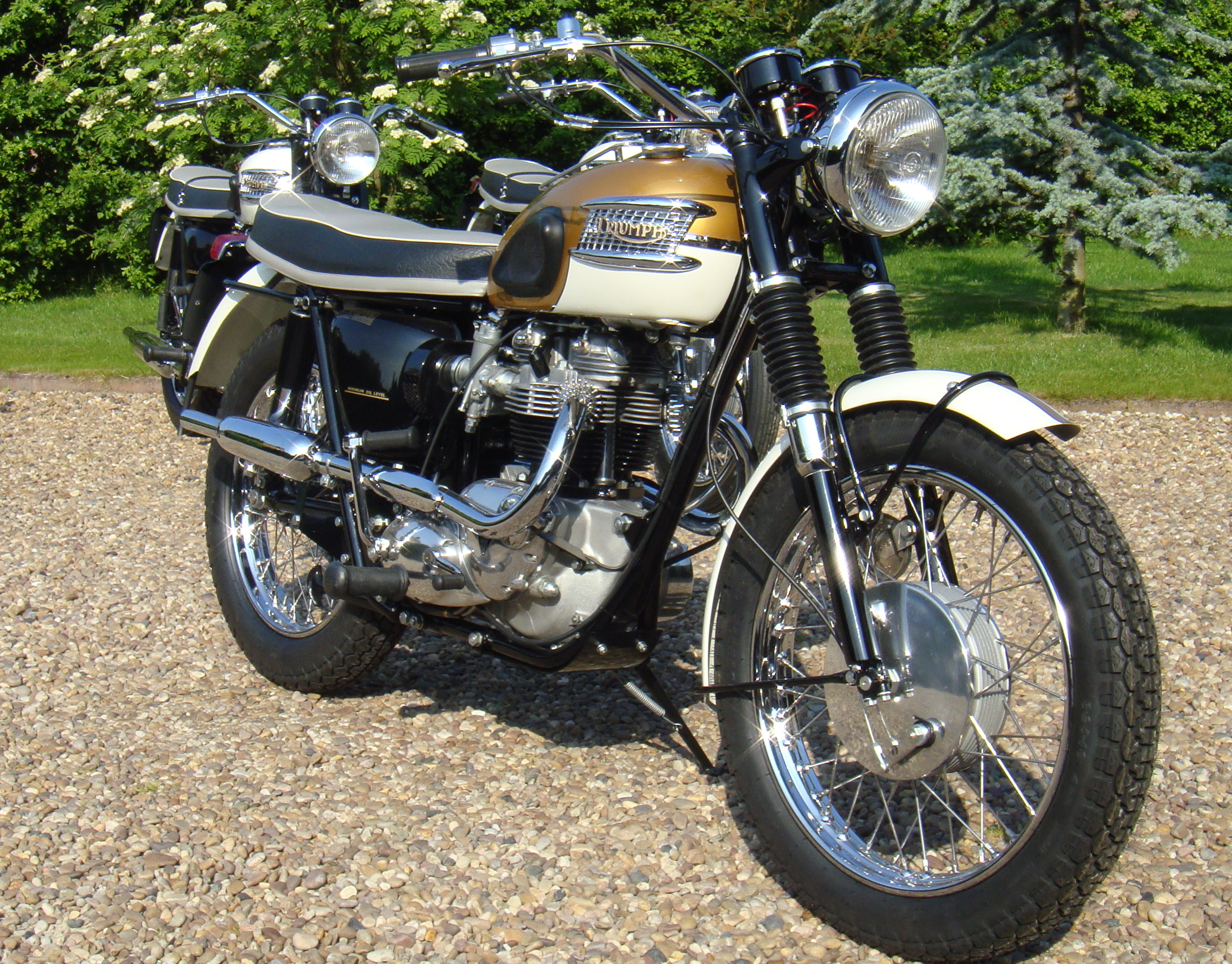 Showthread furthermore Wiring Diagram For Pocket Bike as well Triumph Wiring Diagram For A 1973 Bonneville further Triumph Bonneville Fuel Filter besides Triumphbonneville120 co. on 1967 triumph 650 bonneville wiring